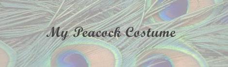 diy peacock costume banner