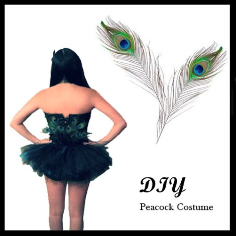 DIY Peacock Costume