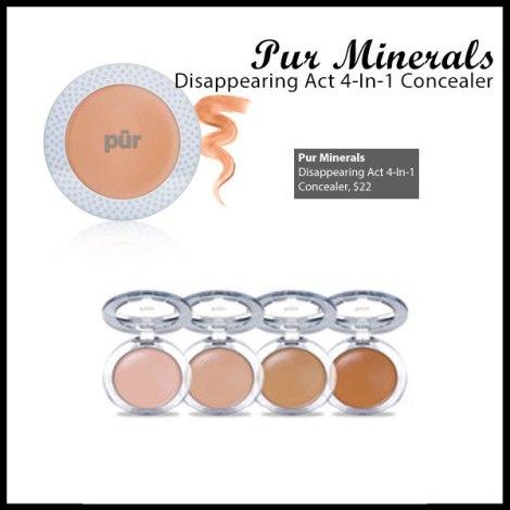 Pur Minerals Concealer