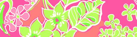 Lilly Print for esteelauder.com
