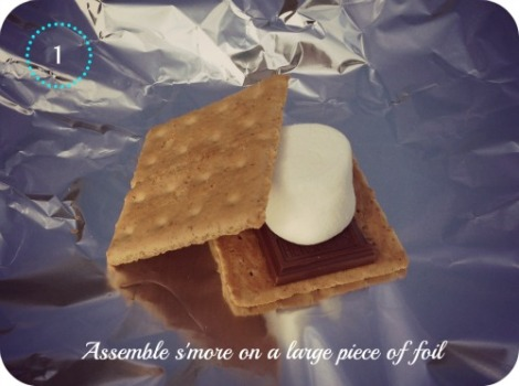 Step 1. assemble ingredients to make a smore